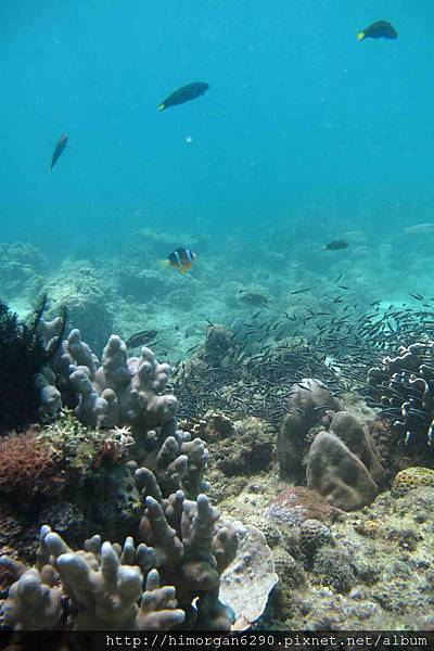 長灘島深潛海景-5
