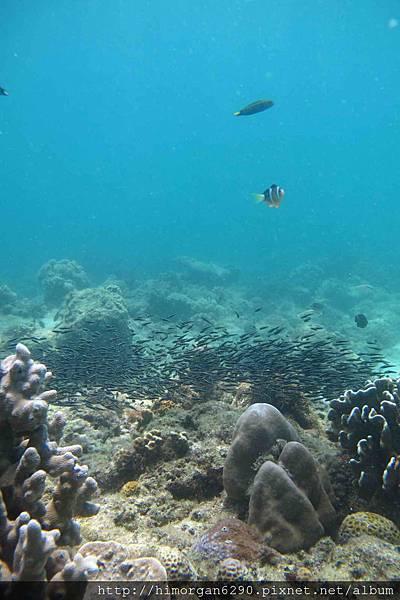 長灘島深潛海景-6