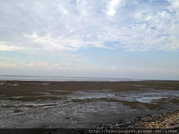 高美溼地右側濕地