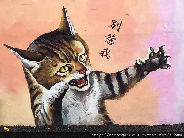 菁埔貓咪彩繪村-6