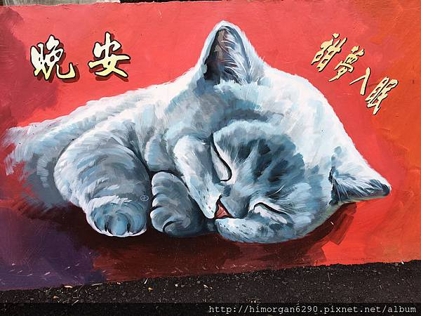 菁埔貓咪彩繪村-8
