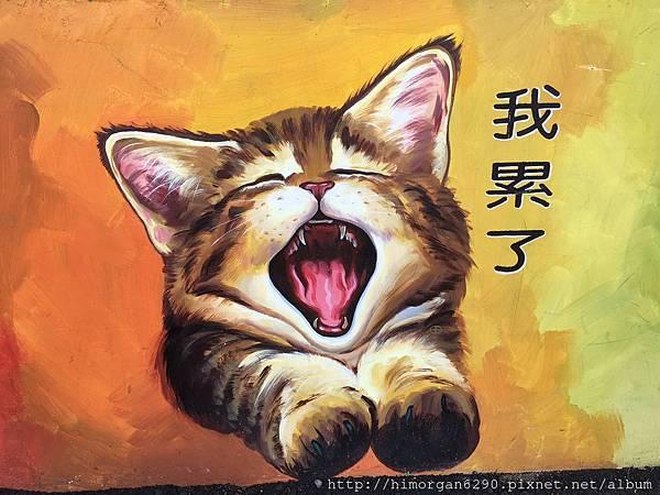 菁埔貓咪彩繪村-9