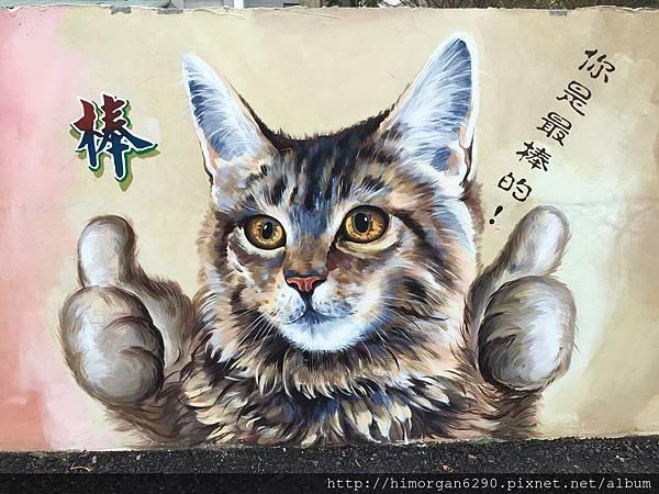 菁埔貓咪彩繪村-12