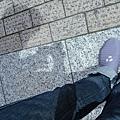 我的鞋子在日本
