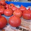 史萊姆番茄XD
