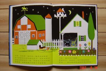 夜裡的貓4(96.6.14)