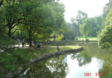 蘇州上海行(8/25):外灘+城隍廟+孫中山文物館+書店1(96.9.20)