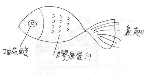 [小五]說故事時間 ~ 一條魚的價值(103.6.25)