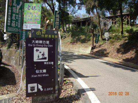 橫山。大崎崠古道(105.2.28)