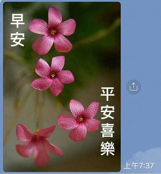 從〝長輩圖〞說起(107.1.30)