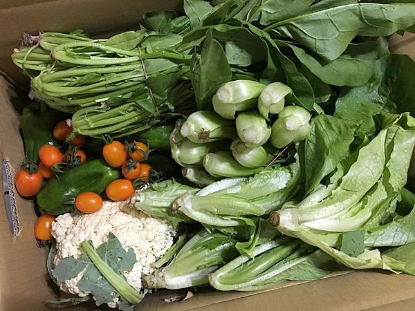 滿溢情意的蔬菜箱(107.2.24)