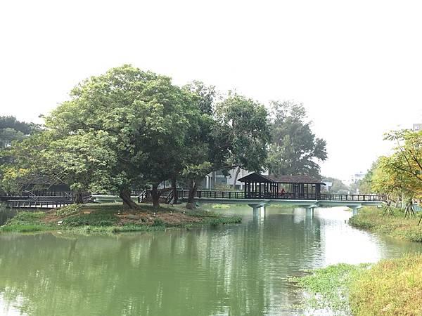 新竹公園走一圈(107.11.7)