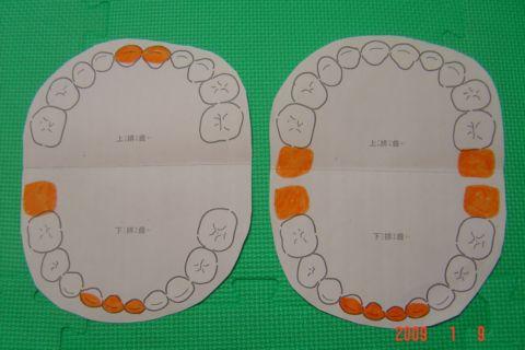 嘟嘟和琳琳的掉牙/長牙記錄(98.1.9)