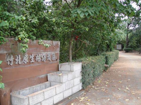 竹北原生林保護區+新月沙灘(98.5.24)
