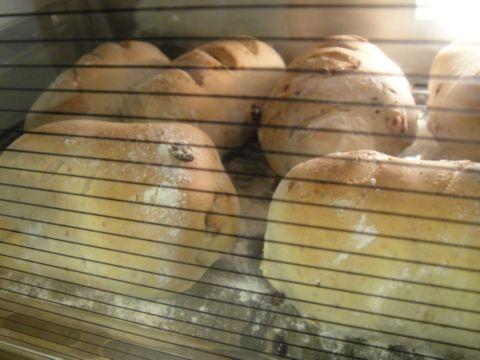 包肉鬆和cheese的全麥麵包(98.12.4)