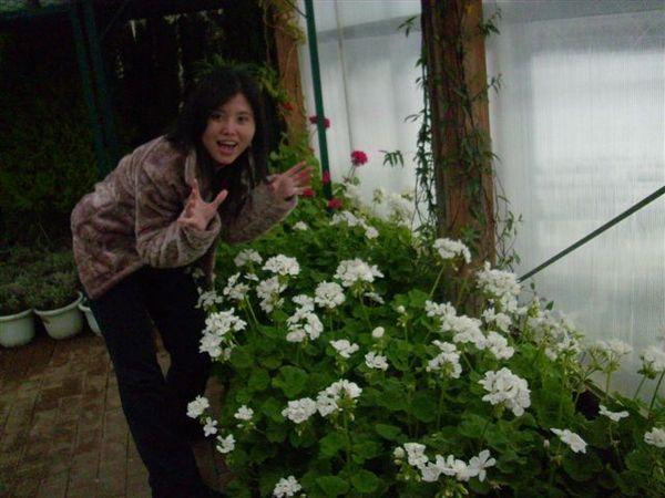 看到小白花裝驚訝