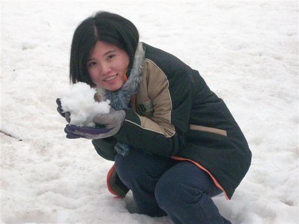 薰衣草花田都被蓋滿雪了