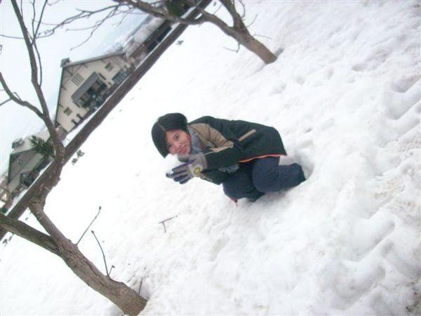 看不到薰衣草,第一次摸雪也挺high