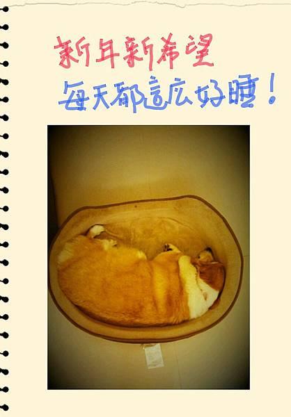 S Memo_53.jpg