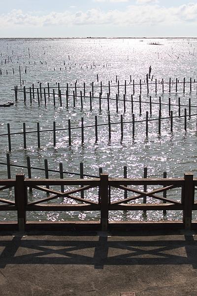 20100815 126.jpg