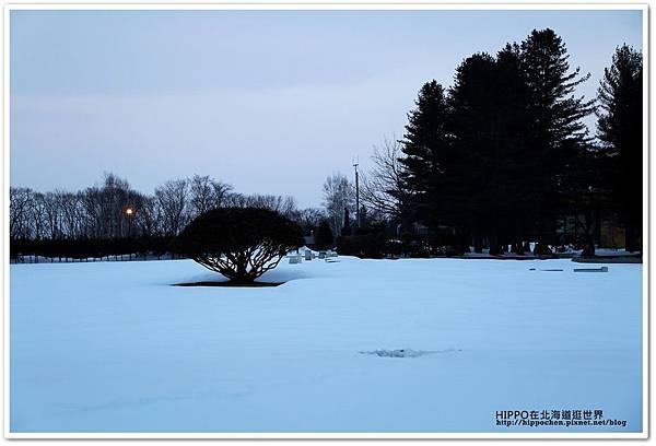 PhotoCap_165.jpg