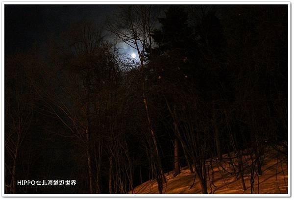 PhotoCap_159.jpg