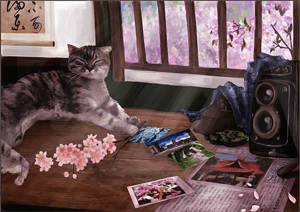 貓與窗.jpg