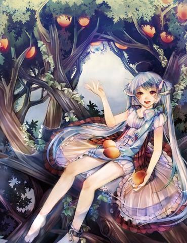 樹果.jpg