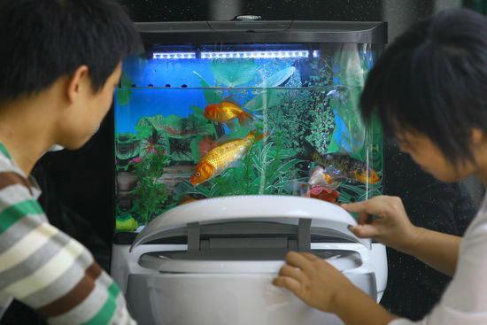 20100722-fish-globe1.jpg