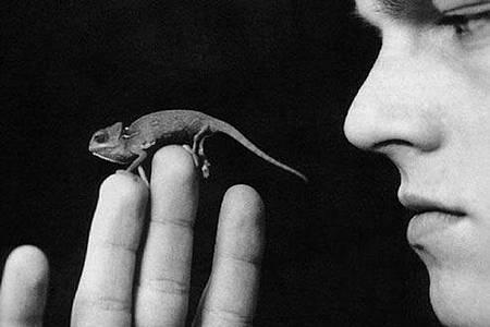 爬蟲類動物是他的最愛!