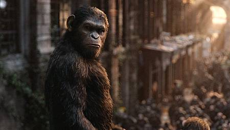 07-Dawn of the Planet of the Apes.JPG