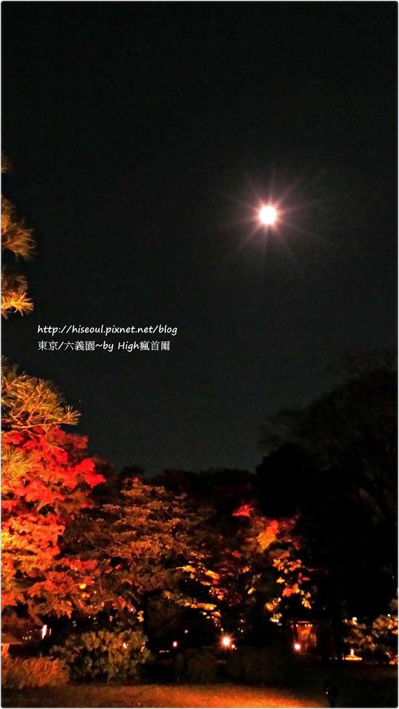 20151124_180652_LLS.JPG