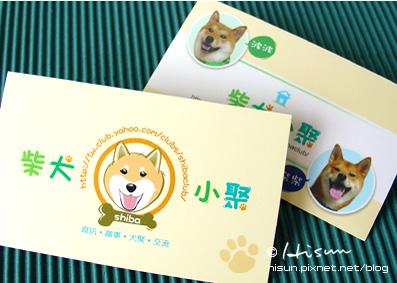 CI-柴犬02.jpg