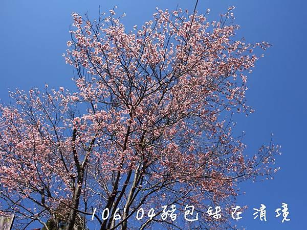 IMG_9885B.jpg
