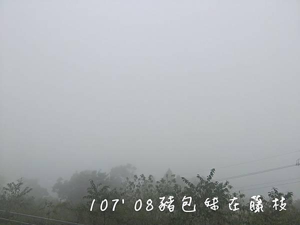 B1070818我在藤枝好望角_190305_0057.jpg