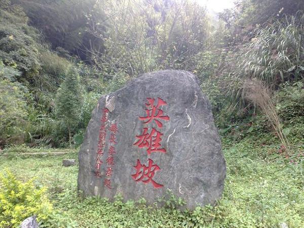 20081018139.jpg