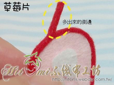 草莓片_14.jpg