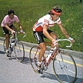 1984年環義登山段,身著粉紅衫的Moser 咬緊牙闗緊跟在VISENTINI之後carrera V-R001