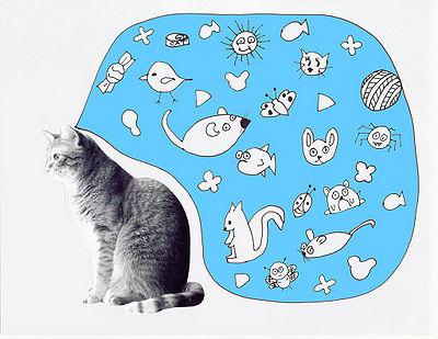 400px-Cat_Think