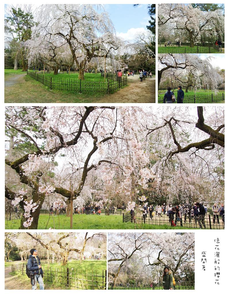 Kansai03-13.jpg