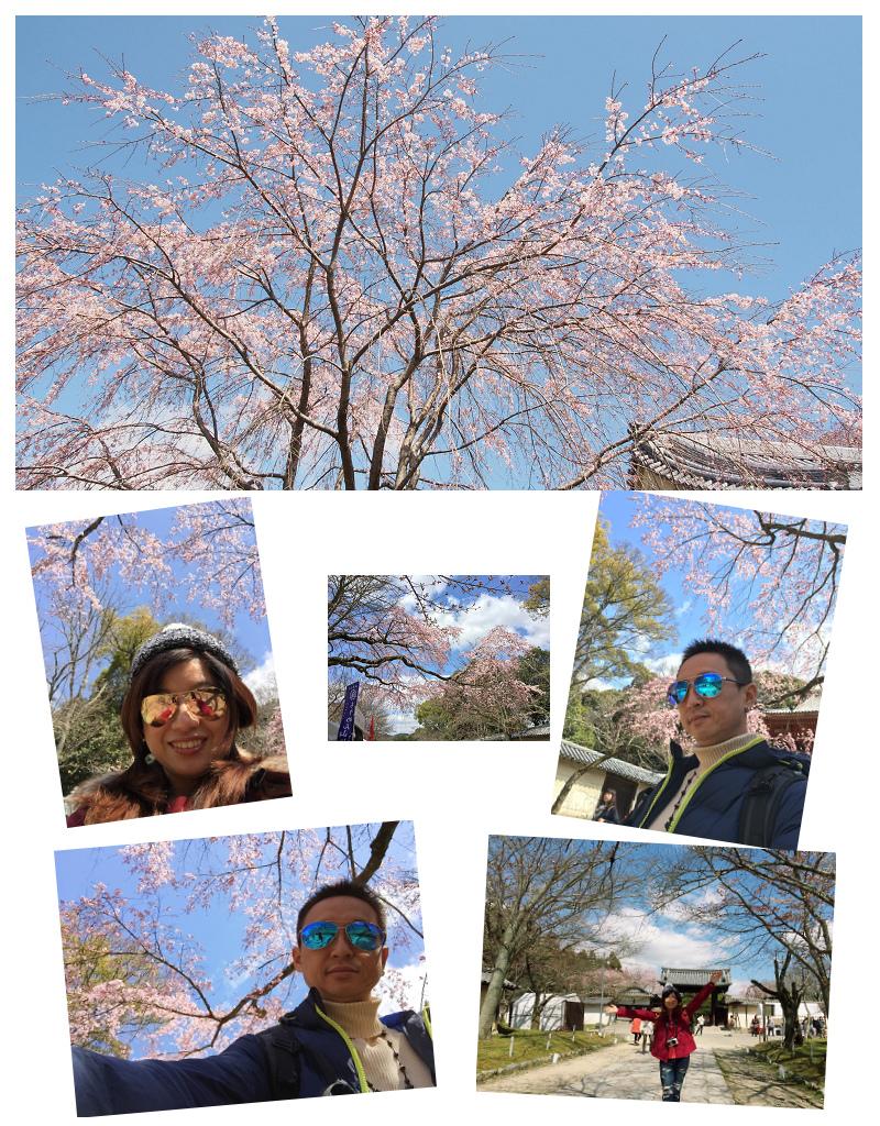 Kansai03-29.jpg