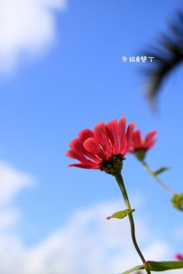 IMG_0205.JPG