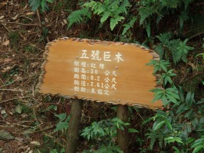 觀霧4-06.jpg