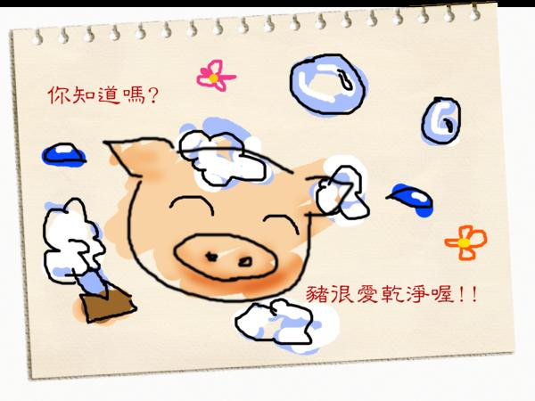 豬1拷貝.png