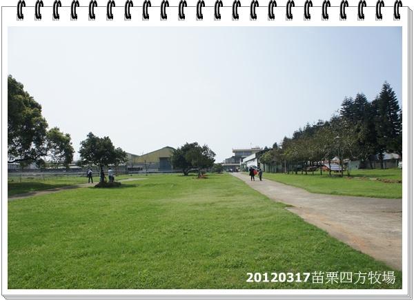 DSC01215