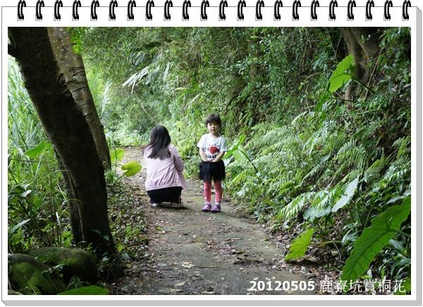 DSC01971