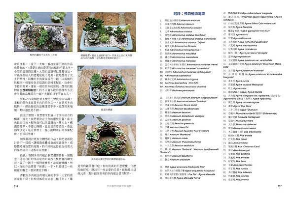 succulent-12-16