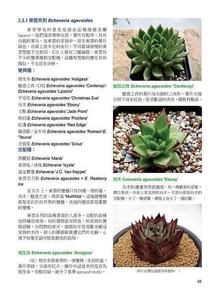 succulent-2-3-1.jpg