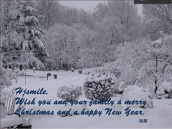 感謝華府~~ 雪樹銀花歡慶聖誕~~~