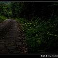 JPG_4215-1-fb